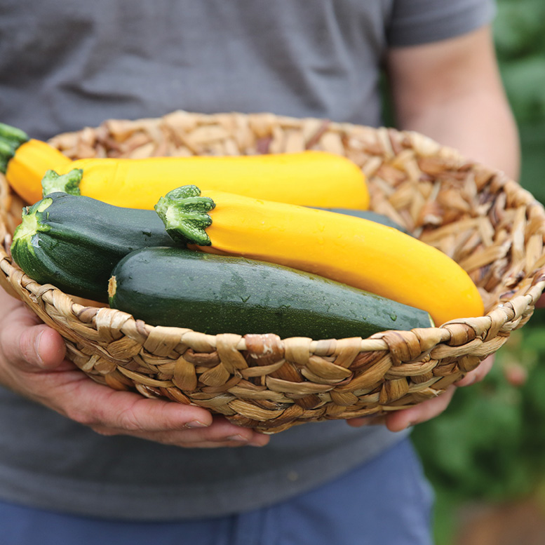 hands holding a basket of green and yellow zucchini