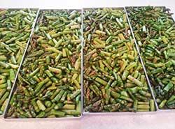 asparagus on trays