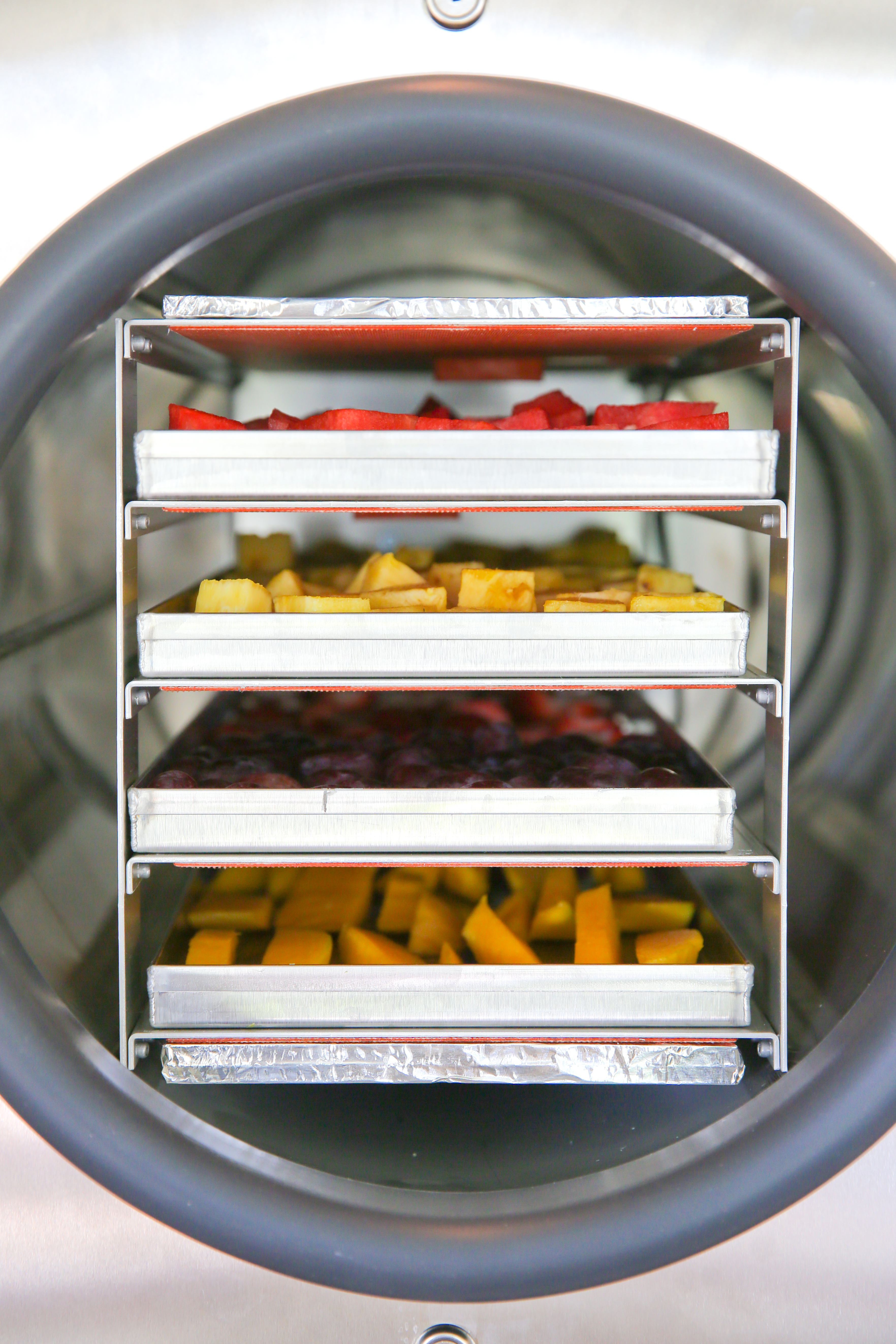 trays of food in a freeze dryer