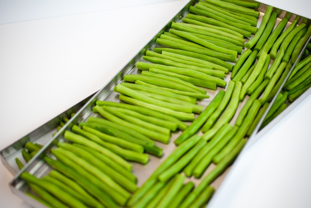 green beans on freeze dryer trays