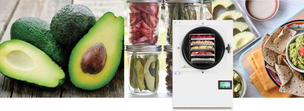 white freeze dryer, fresh avocados, jars of freeze dried food, guacamole