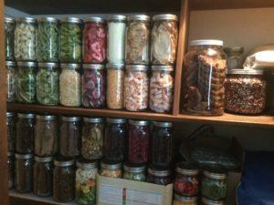freeze dried food in jars on a shelf