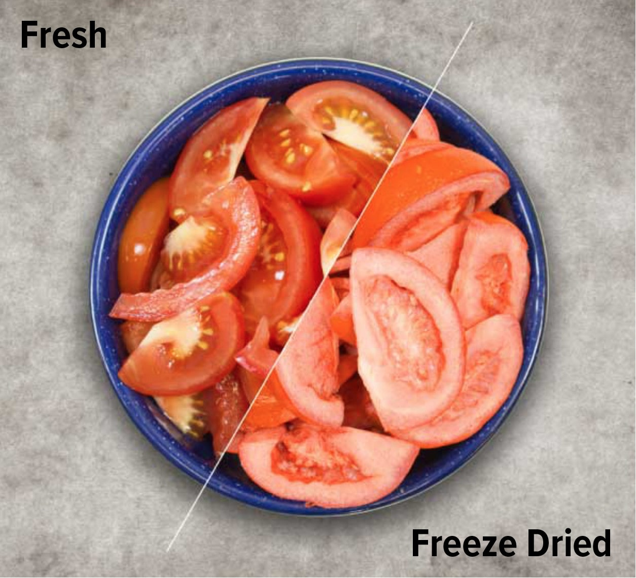 fresh tomatoes compared to Harvest Right freeze dried tomatoes
