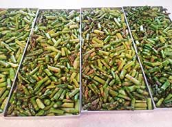 asparagus on trays