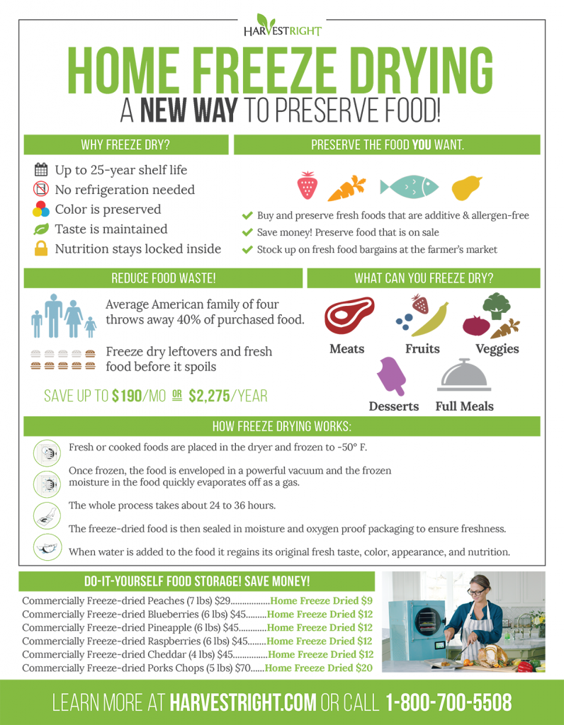 Home Freeze-Drying Infographic