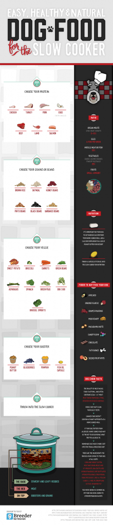 infographic from BreederRetriever.com. It shows you how to cook up (or freeze dry!) nutritious recipes for your precious pet