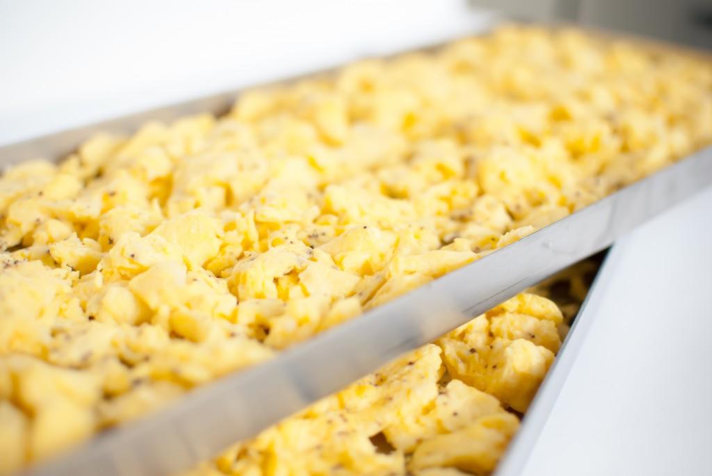 freeze dried scrambled eggs on freeze dryer trays