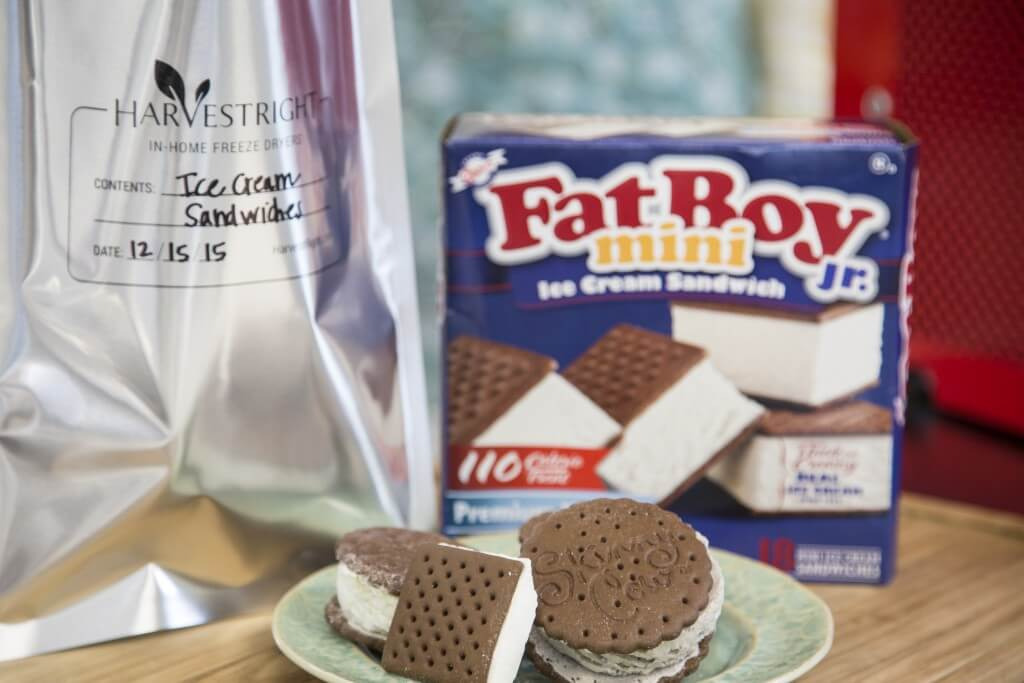 freeze dried ice cream sandwiches