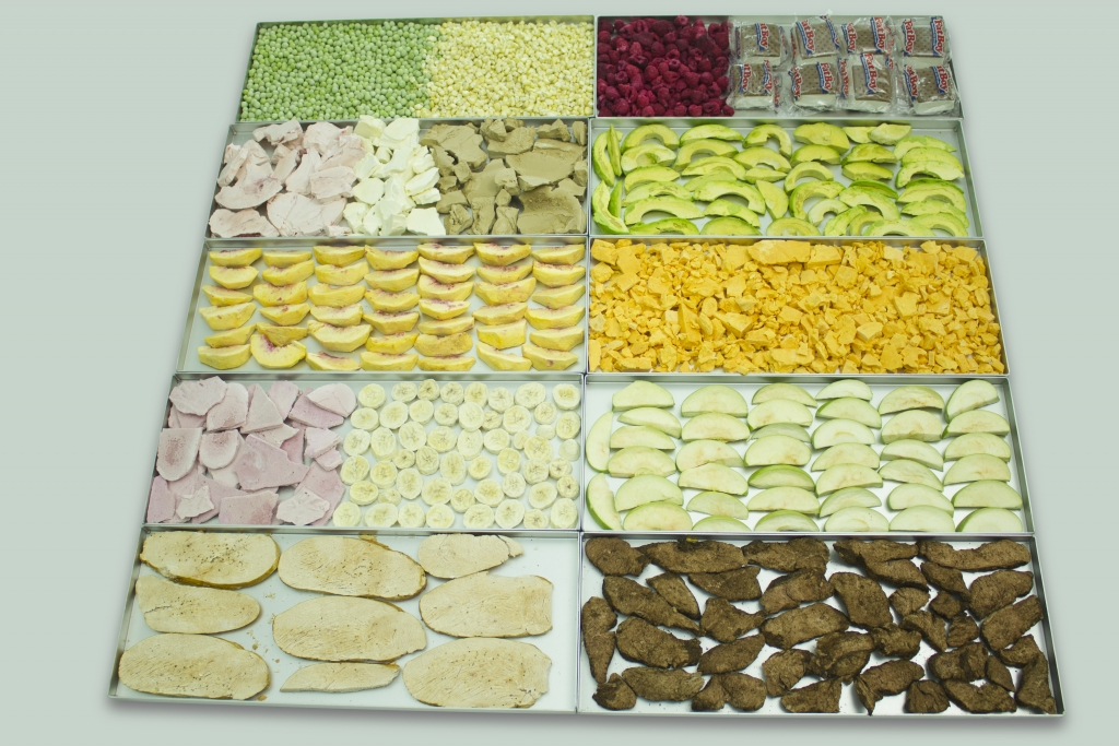lots of freeze dried food on trays