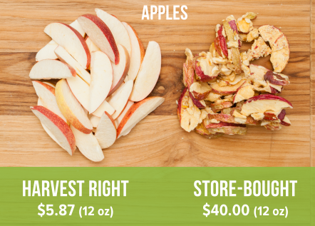 Harvest Right freeze dried apples (left) compared to store-bought freeze dried apples (right).