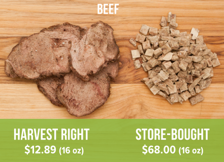Harvest Right freeze dried beef (left) compared to store-bought freeze dried beef (right).