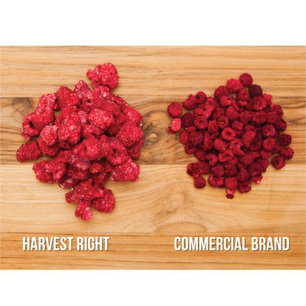 Freeze-dried raspberries
