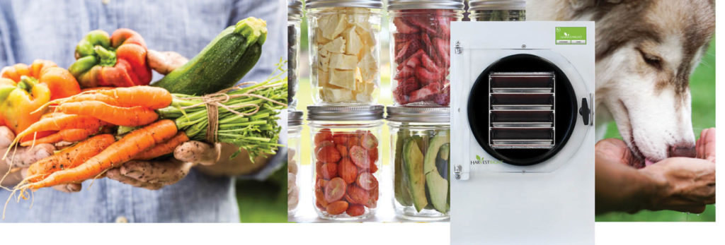 fresh picked food, freeze dried food in jars, a white freeze dryer, a dog eating out of a person's hands