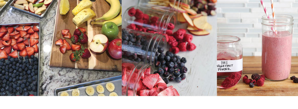 Freeze dried fruit and smoothie
