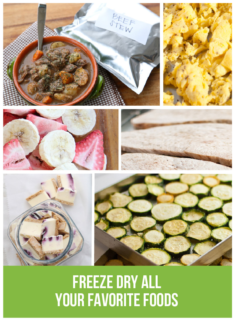 Various types of freeze dried food with the caption: Freeze dry all your favorite foods