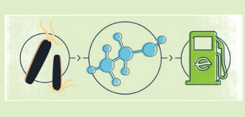 Icons of microbes, a molecule, and a gas pump